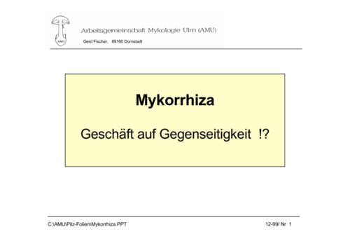 Mykorrhiza(Stofftransfer)_Page_1.png